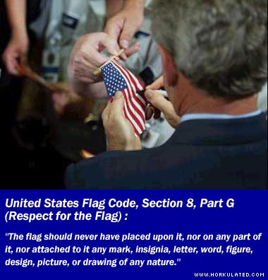 bush_flag_desecration.jpg