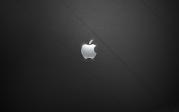 leatherholes-apple